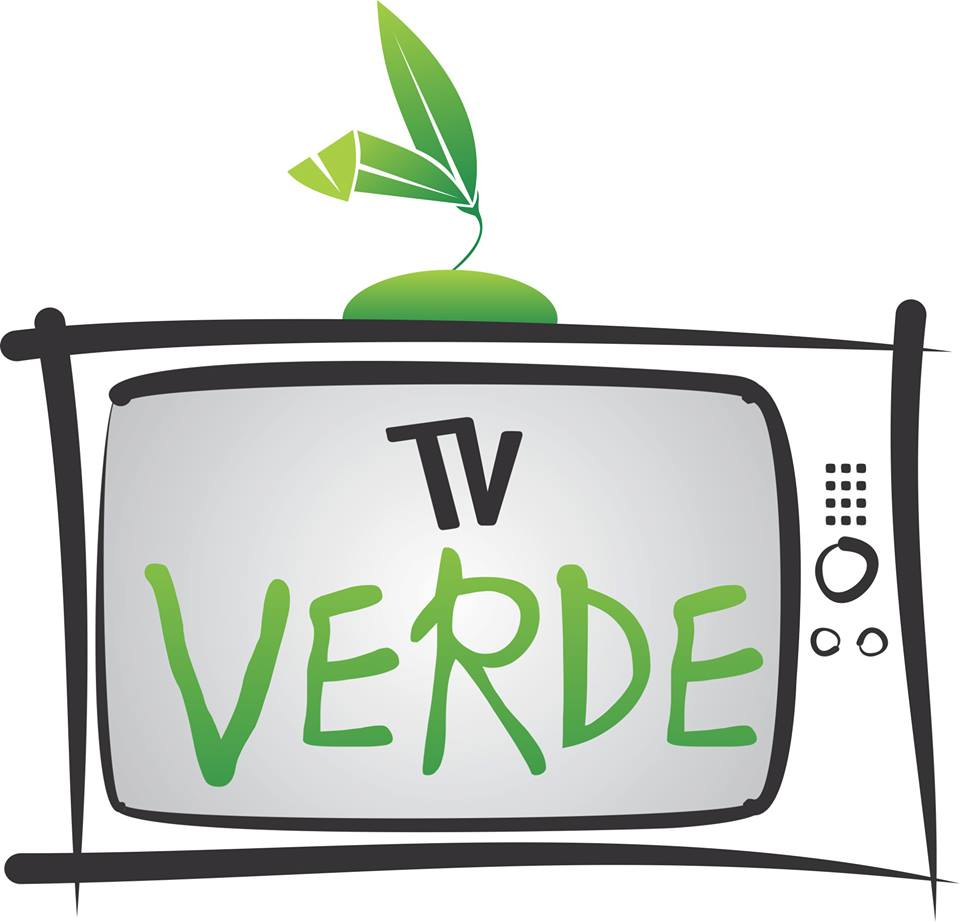 Logo - TV Verde
