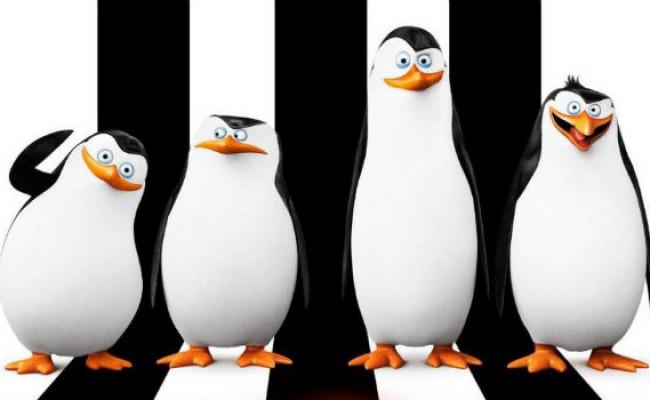 Filme 'Os Pinguins de Madagascar' já está no cinema da Nova Brasília