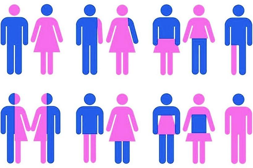 Gênero e sexualidade?