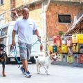 Morador sonha em montar uma clínica veterinária na Favela - Foto: Betinho Casas Novas/Jornal Voz Das Comunidades