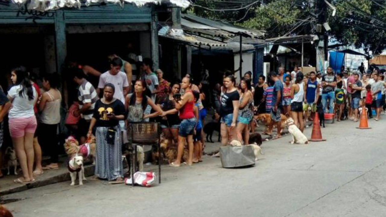 Quatro Patas: projeto oferece serviço veterinário de graça na Rocinha