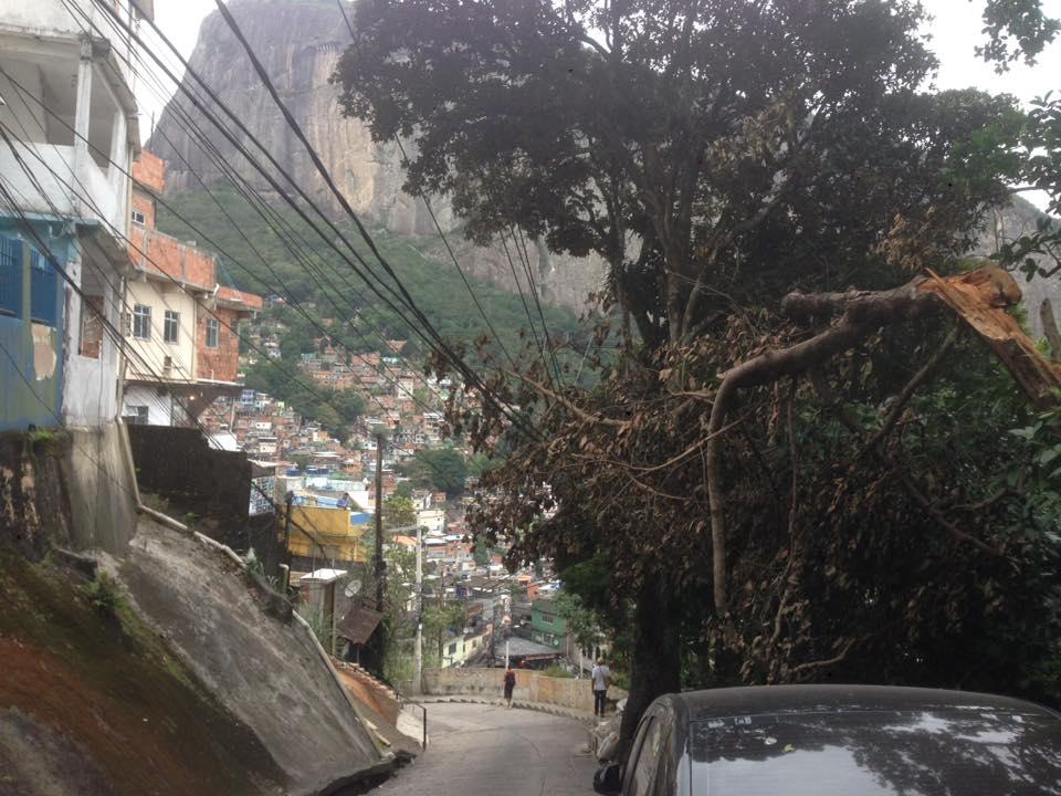 Árvore cai em fiação na Rocinha e leva risco aos moradores há quase 20 dias