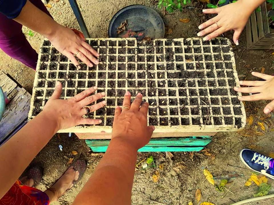 #Opinião: Como assim meio ambiente e sustentabilidade nas favelas?