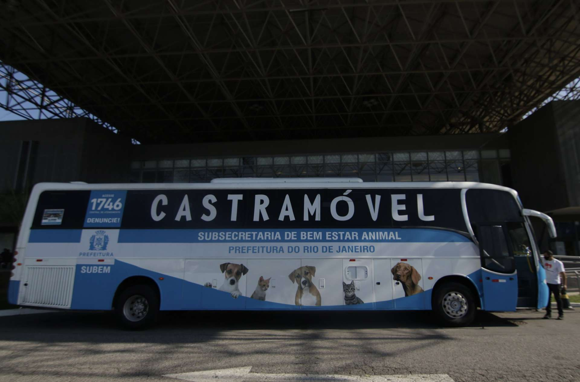 Castramóvel vai levar atendimento gratuito a animais em favelas