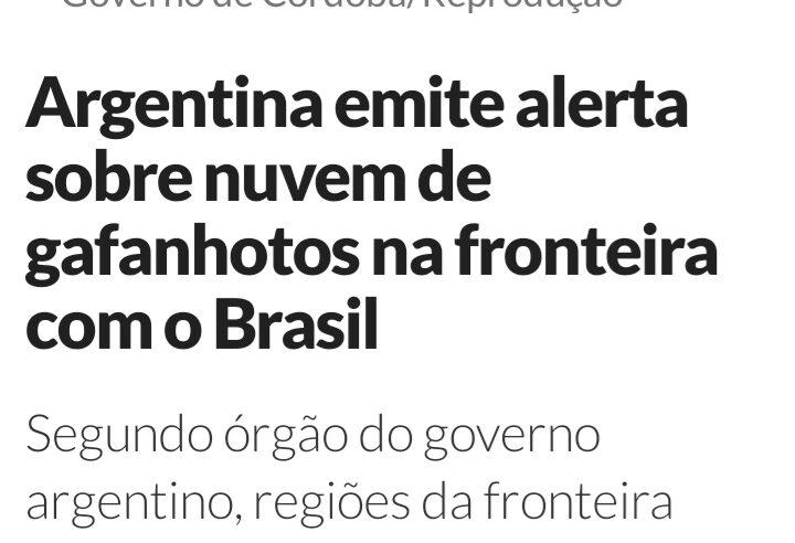 Nuvem de gafanhotos pode se aproximar do Brasil